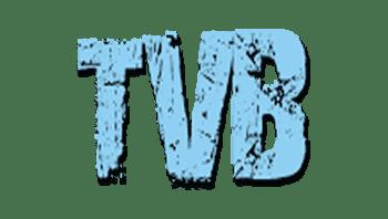 Travaux de peinture - Ile de France - TVB